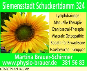 Brauer-Schirmer