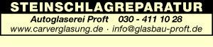 Logo von Autoglaserei Proft